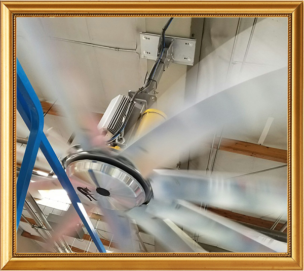 Not-So-Great Moments in Safety: Fan Blade Guarding